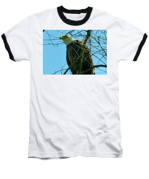 Bald Eagle Keeping Guard Baseball T-Shirt