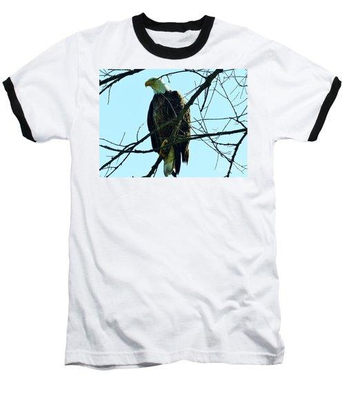 Bald Eagle Over The Root River Baseball T-Shirt