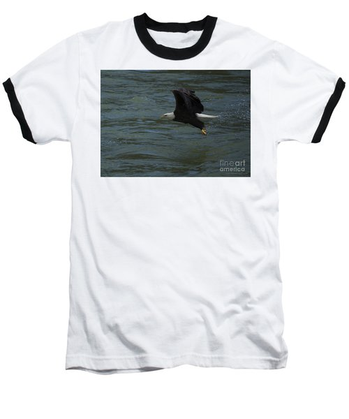 Bald Eagle With Fish In Claws Flying Over The French Broad River, Tennessee Baseball T-Shirt by Nature Scapes Fine Art