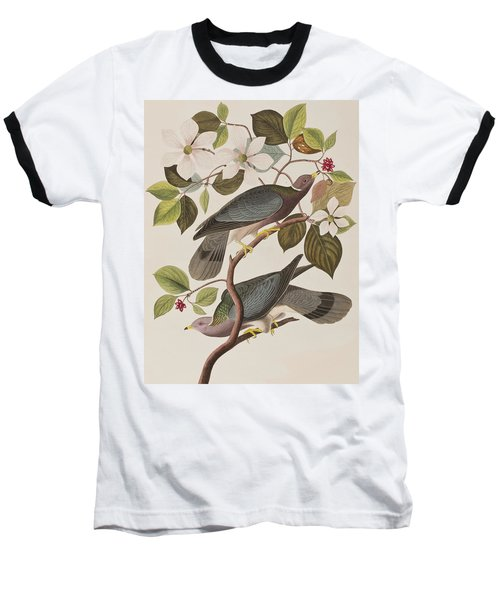 Band-tailed Pigeon  Baseball T-Shirt by John James Audubon