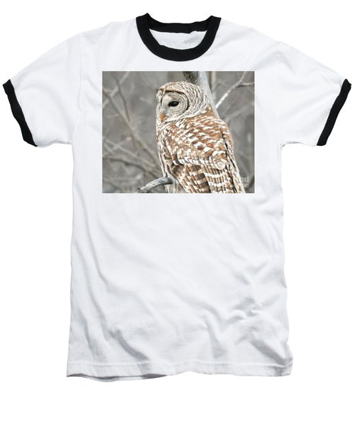 Barred Owl Close-up Baseball T-Shirt by Kathy M Krause