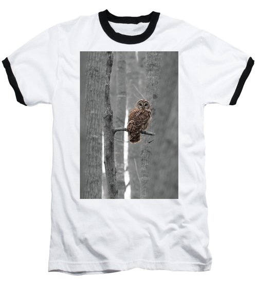 Barred Owl In Winter Woods #1 Baseball T-Shirt