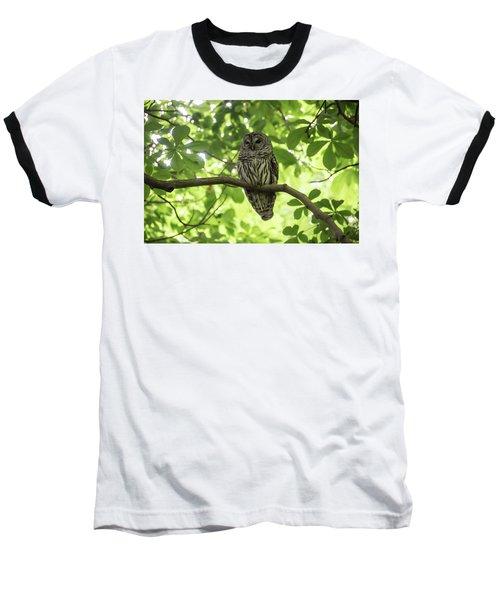 Barred Owl Baseball T-Shirt