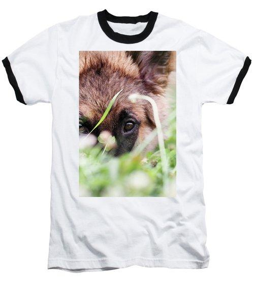 Bashful Baseball T-Shirt by Stephanie Frey