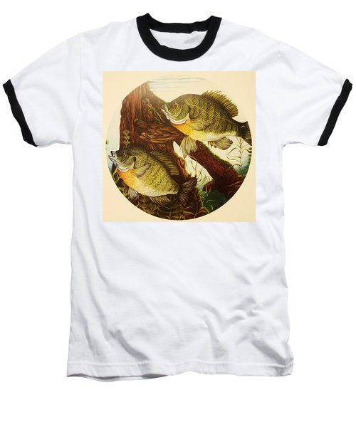 Baseball T-Shirt featuring the drawing Basking Bluegills by Bruce Bley