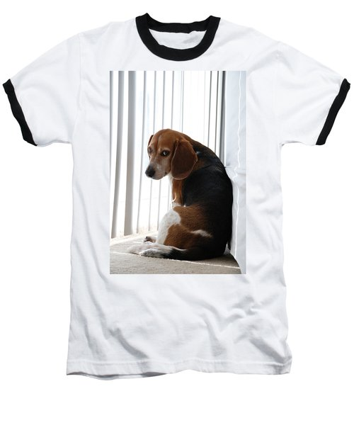 Baseball T-Shirt featuring the photograph Beagle Attitude by Jennifer Ancker