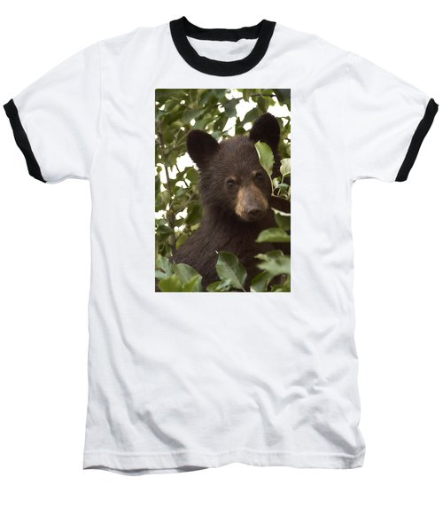 Bear Cub In Apple Tree7 Baseball T-Shirt by Loni Collins