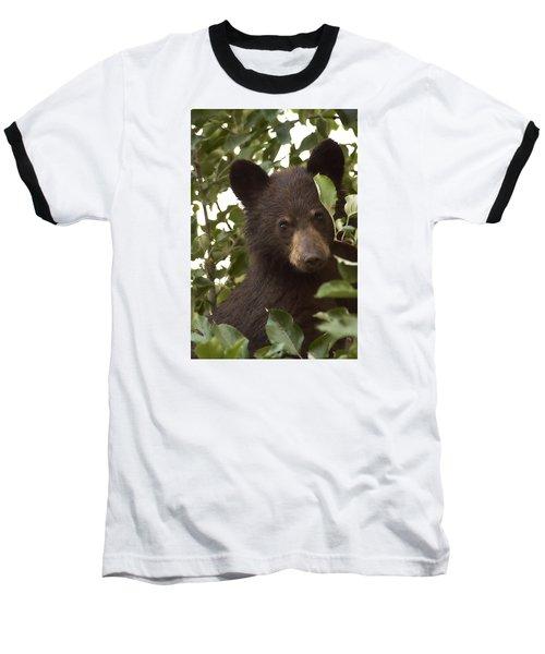 Bear Cub In Apple Tree7 Baseball T-Shirt