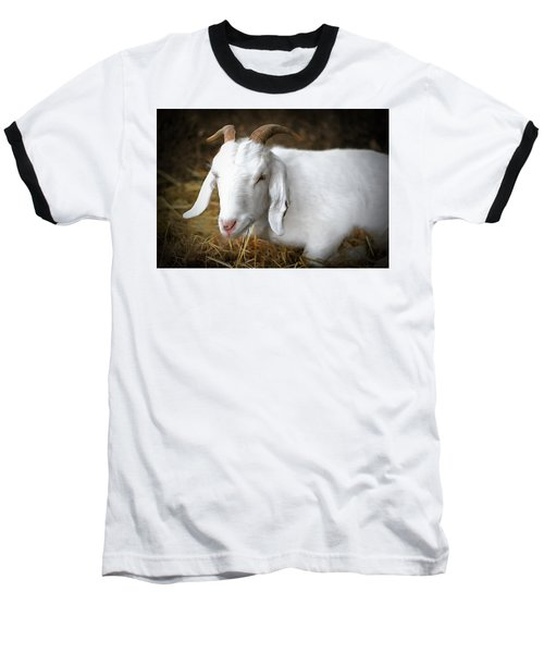 Baseball T-Shirt featuring the photograph Bedded Down by Marion Johnson
