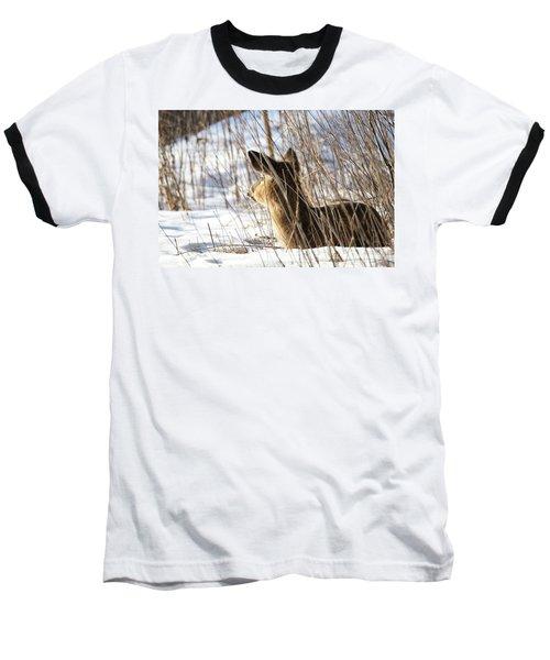 Bedded Fawn 2 Baseball T-Shirt