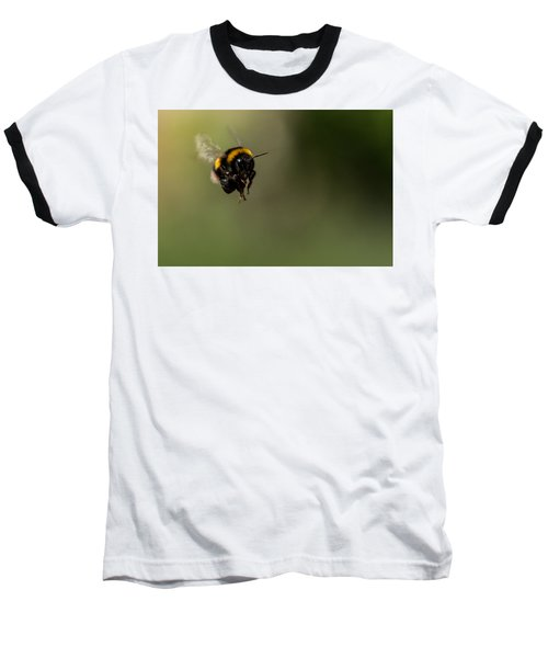 Bee Flying - View From Front Baseball T-Shirt