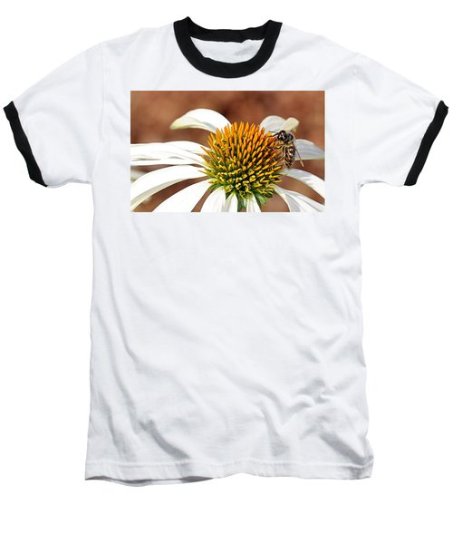 Baseball T-Shirt featuring the photograph Bee In The Echinacea  by AJ Schibig