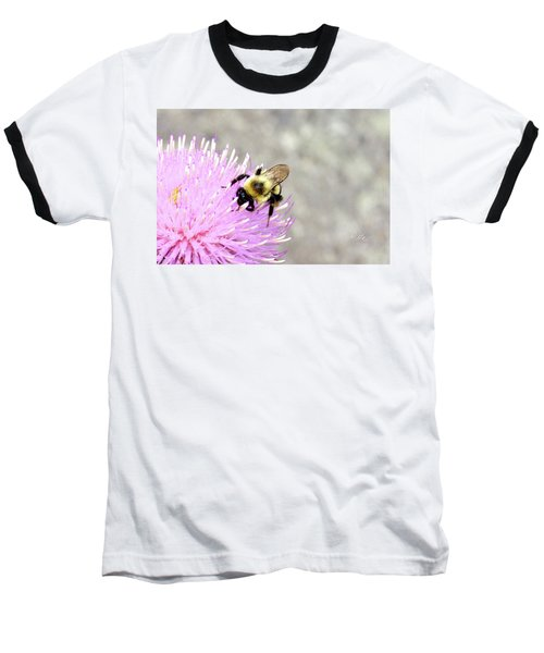 Baseball T-Shirt featuring the photograph Bee On Pink Bull Thistle by Meta Gatschenberger