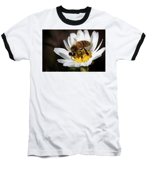 Baseball T-Shirt featuring the photograph Bee On The Flower by Bruno Spagnolo