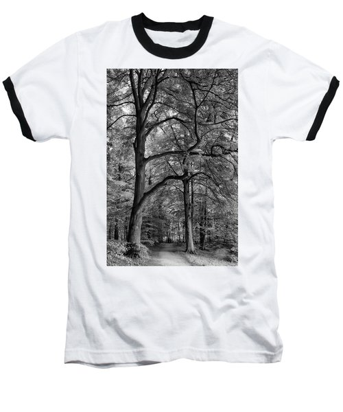 Beech Forest - 365-222 Baseball T-Shirt by Inge Riis McDonald