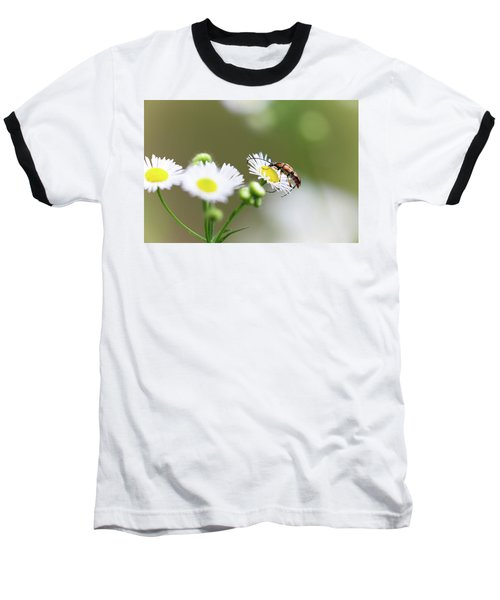 Beetle Daisy Baseball T-Shirt