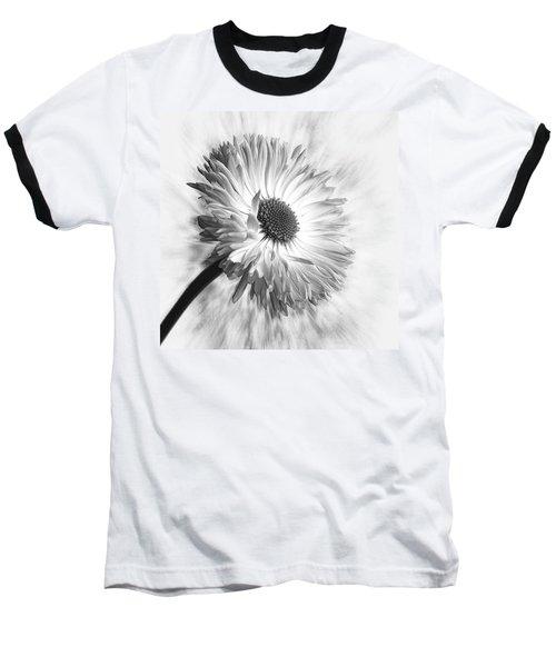 Bellis In Mono  #flower #flowers Baseball T-Shirt by John Edwards