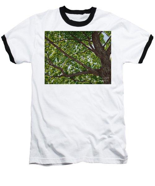 Beneath The Boughs Baseball T-Shirt