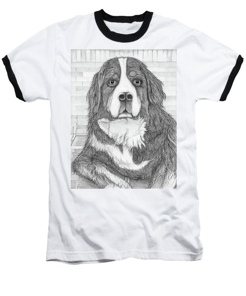 Bernese Mountain Dog  Baseball T-Shirt