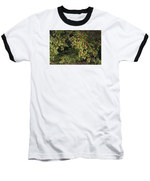 Baseball T-Shirt featuring the photograph Berry Spread by Deborah  Crew-Johnson