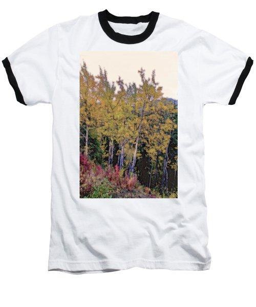Birch Trees #2 Baseball T-Shirt