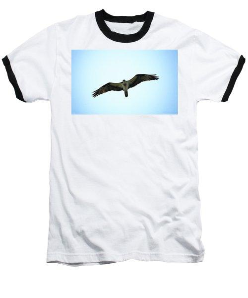 Bird Of Prey Baseball T-Shirt