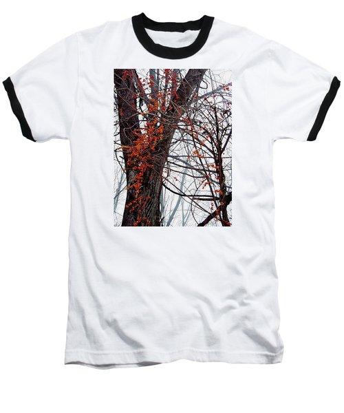 Bittersweet Baseball T-Shirt