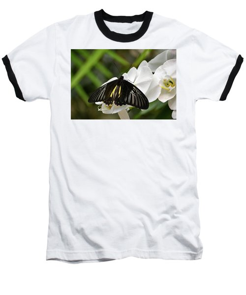 Black Butterfly Baseball T-Shirt