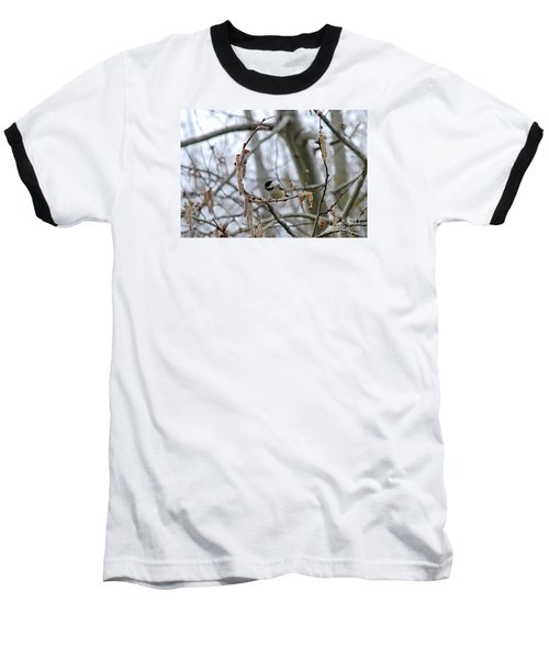 Baseball T-Shirt featuring the photograph Black-capped Chickadee 20120321_38a by Tina Hopkins