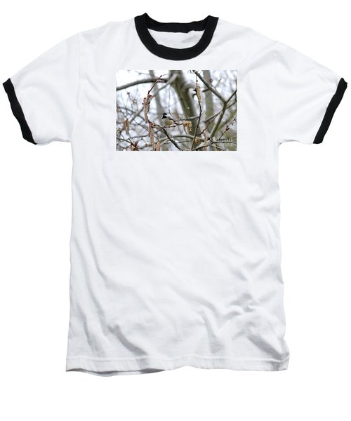 Baseball T-Shirt featuring the photograph Black-capped Chickadee 20120321_39b by Tina Hopkins