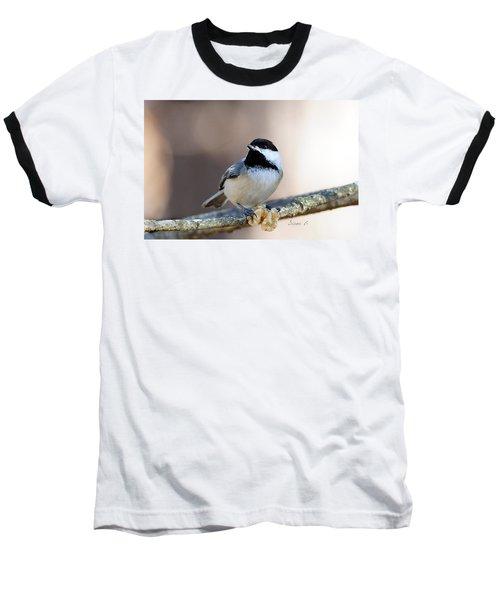 Black-capped Chickadee Baseball T-Shirt by Diane Giurco