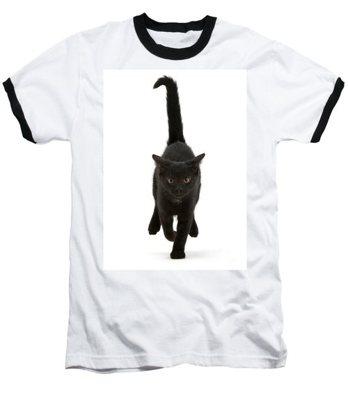 Black Cat On The Run Baseball T-Shirt
