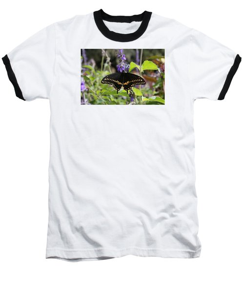 Black Swallowtail Baseball T-Shirt