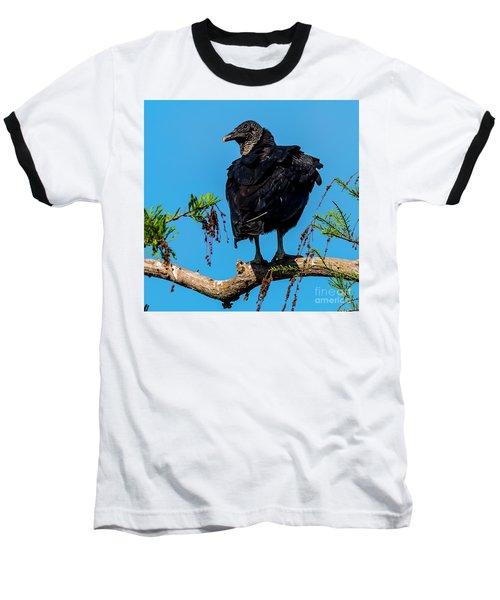 Black Vulture Baseball T-Shirt