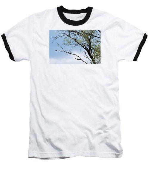 Blackbirds 20120409_221a Baseball T-Shirt by Tina Hopkins