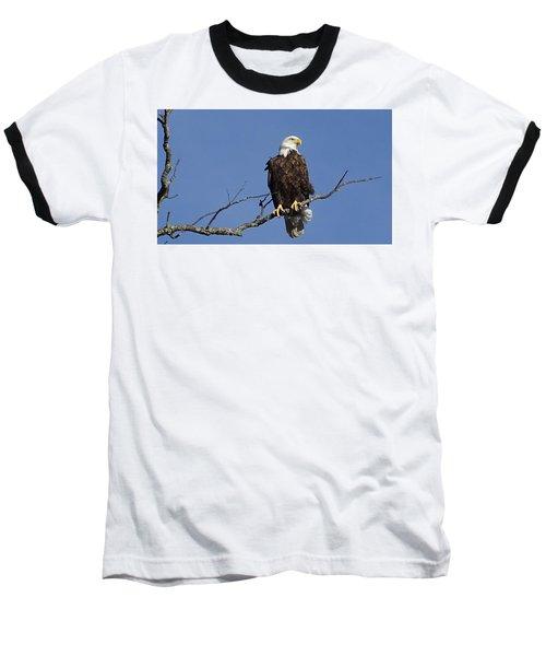 Bald Eagle Baseball T-Shirt