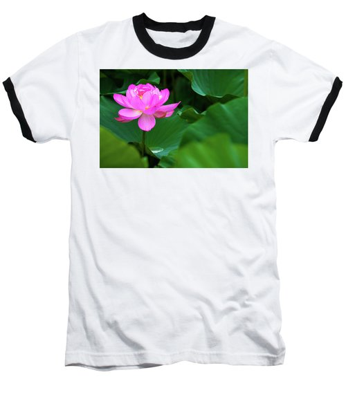 Blooming Pink Lotus Lily Baseball T-Shirt