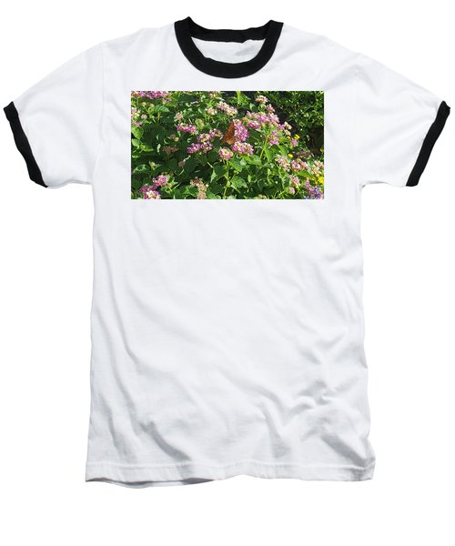 Blossoms And Wings #2 Baseball T-Shirt by Rachel Hannah