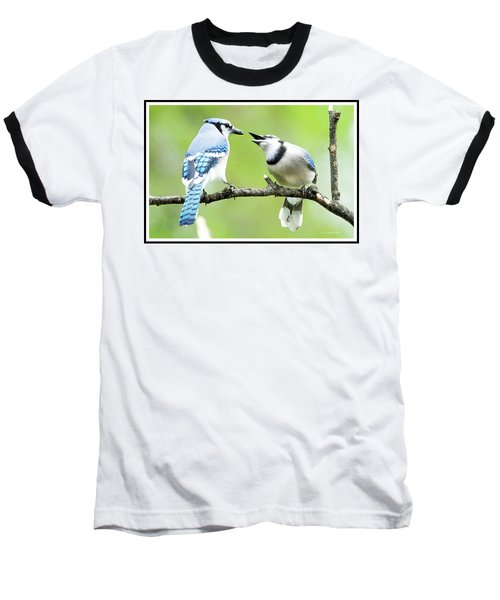 Blue Jay Parent Feeding Juvenile Baseball T-Shirt by A Gurmankin