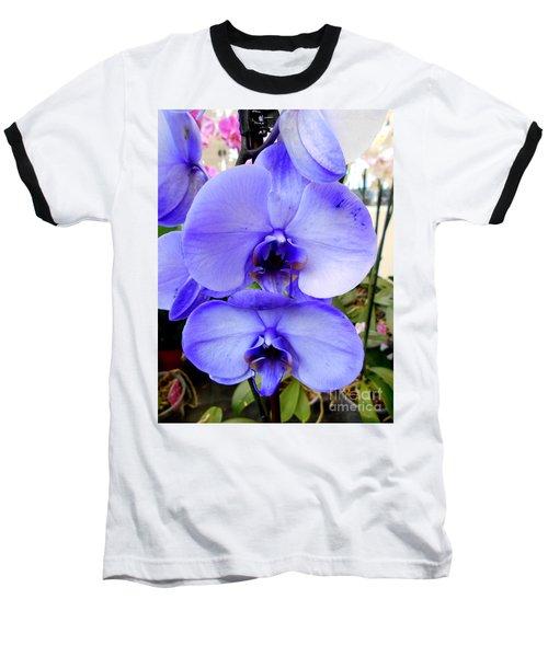 Blue Phalaenopsis Orchid Baseball T-Shirt