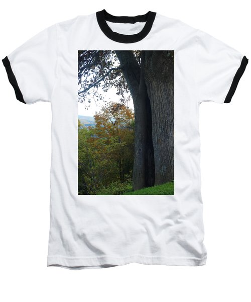 Blue Ridge Parkway Tree Baseball T-Shirt