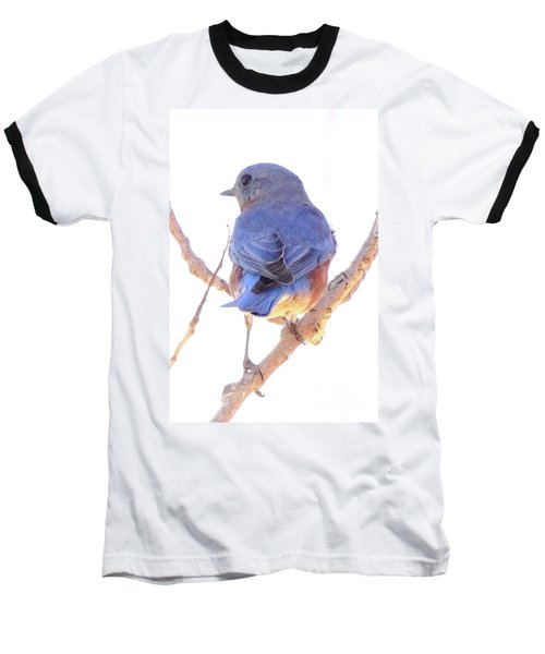 Bluebird On White Baseball T-Shirt