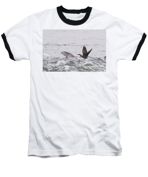 Baby Bottlenose Dolphin - Scotland #10 Baseball T-Shirt