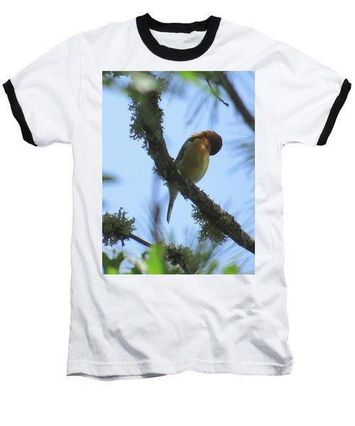 Bird Of Pray - Images From The Garden Baseball T-Shirt by Brooks Garten Hauschild