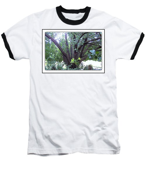 Bradford Baseball T-Shirt