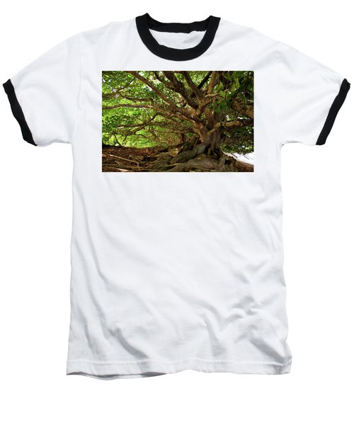 Branches And Roots Baseball T-Shirt