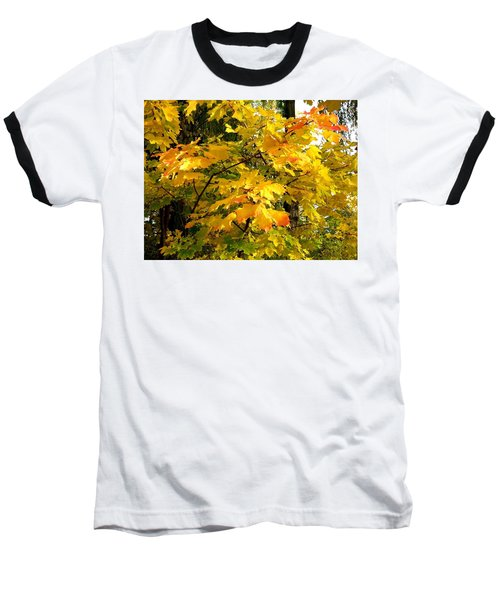 Baseball T-Shirt featuring the photograph Brilliant Maple Leaves by Will Borden
