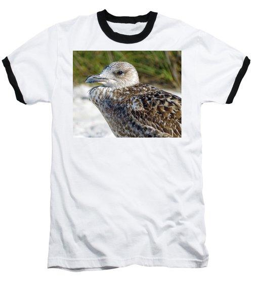 Brown Gull At Wiggins Pass Baseball T-Shirt
