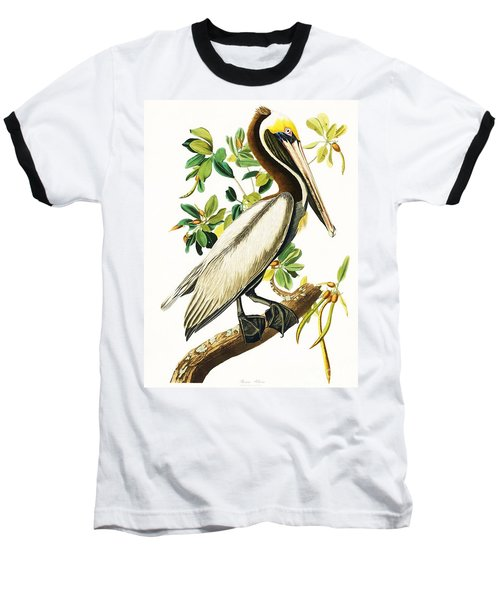 Brown Pelican Baseball T-Shirt by Pg Reproductions