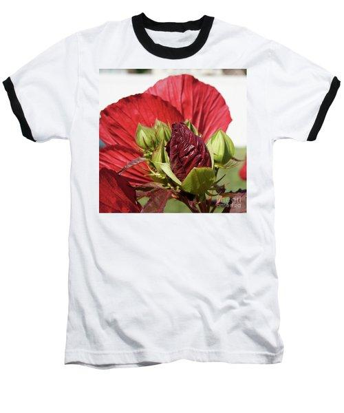 Budding Beauty Baseball T-Shirt